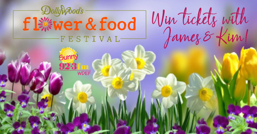 Sunny Dollywood Flower And Food Festival Promo Reel